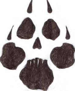 Picture of a black dog paw print that has been modified to create a skull in the negative space between the black