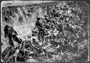 Picture of bodies in a pit from the Holocaust